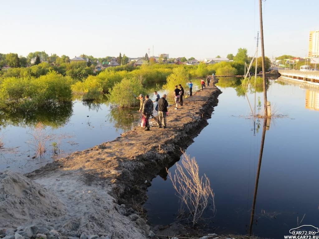 прогноз на рыбалку тюменская область